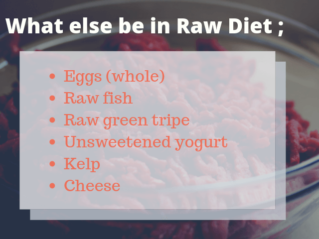 what-else-could-be in-raw-diet