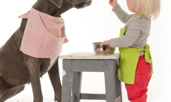 great-dane-with-kids